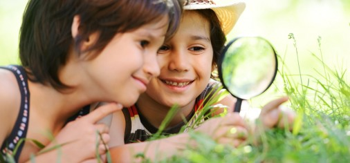 Save  up to $2100 on Stutelage Summer Camps