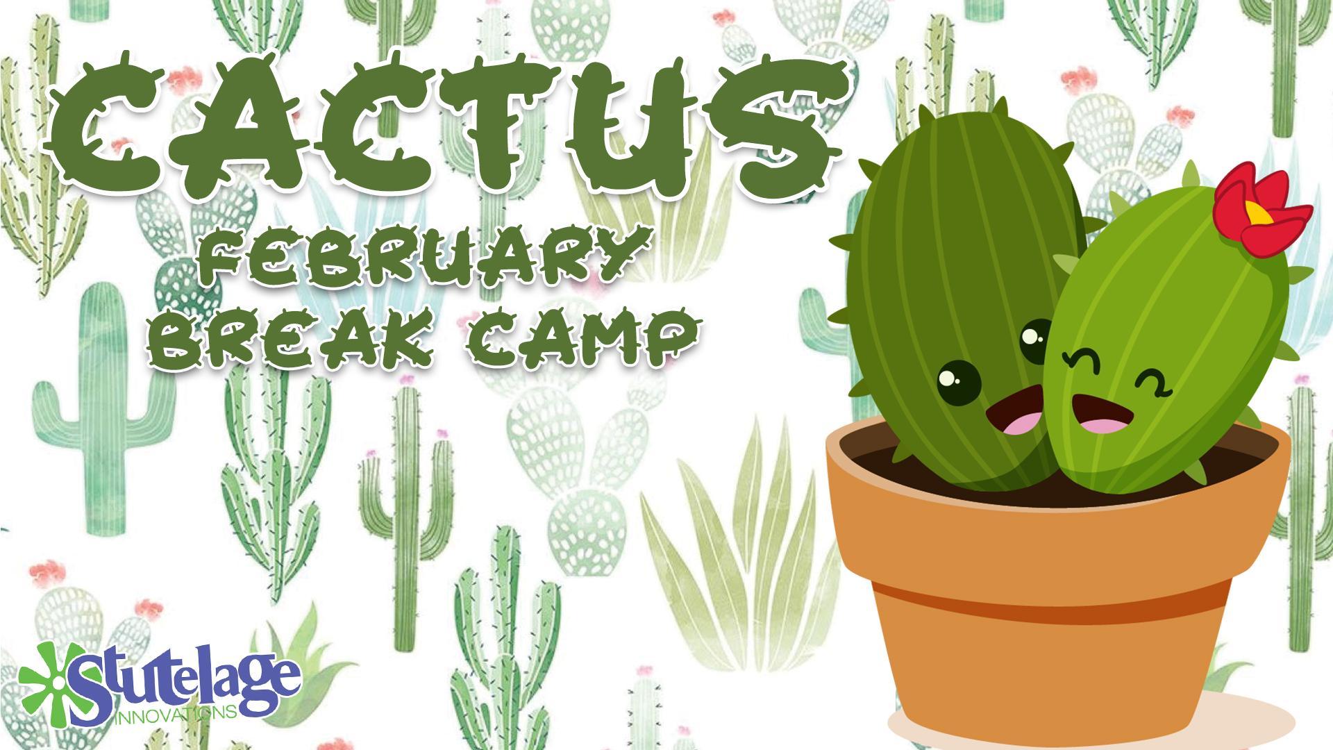 Cactus Buffalo NY School Year Camps